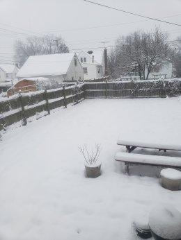 Sunday Snow!