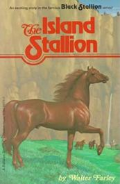 island stallion